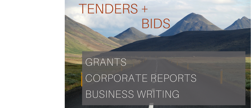 Tender Writing Services, Proposal Writing for Tender Success