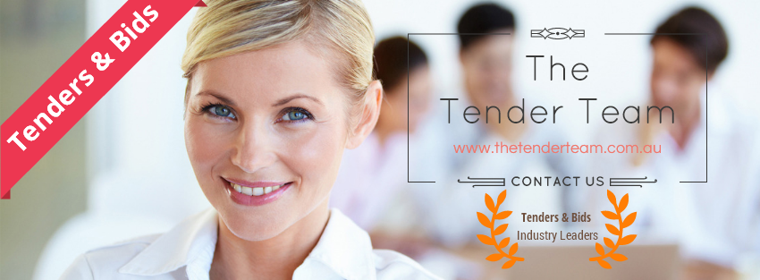 the tender team assist you in tender writing services & drives to tender success