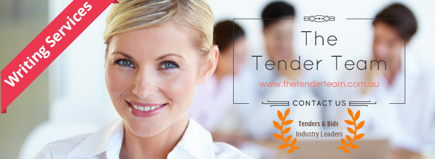 The Tender Team - Additional writing services