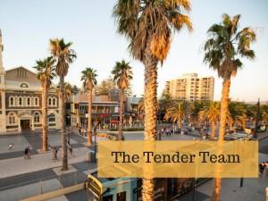 tender writers in adelaide