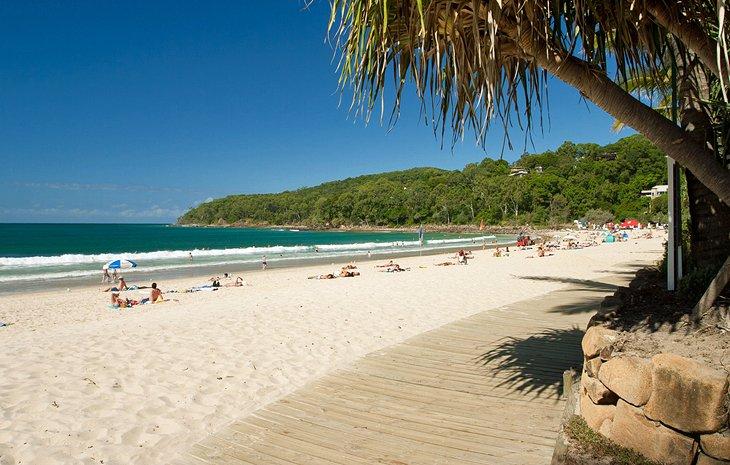 sunshine coast noosa tender bid writer help