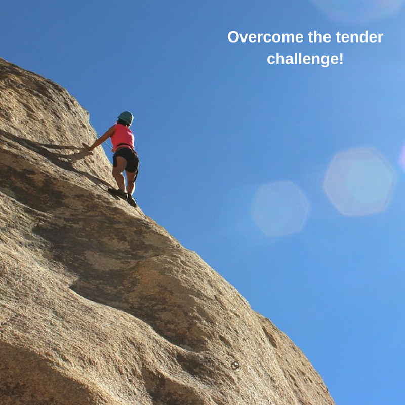 Challenging Tender Questions - The Tender Team
