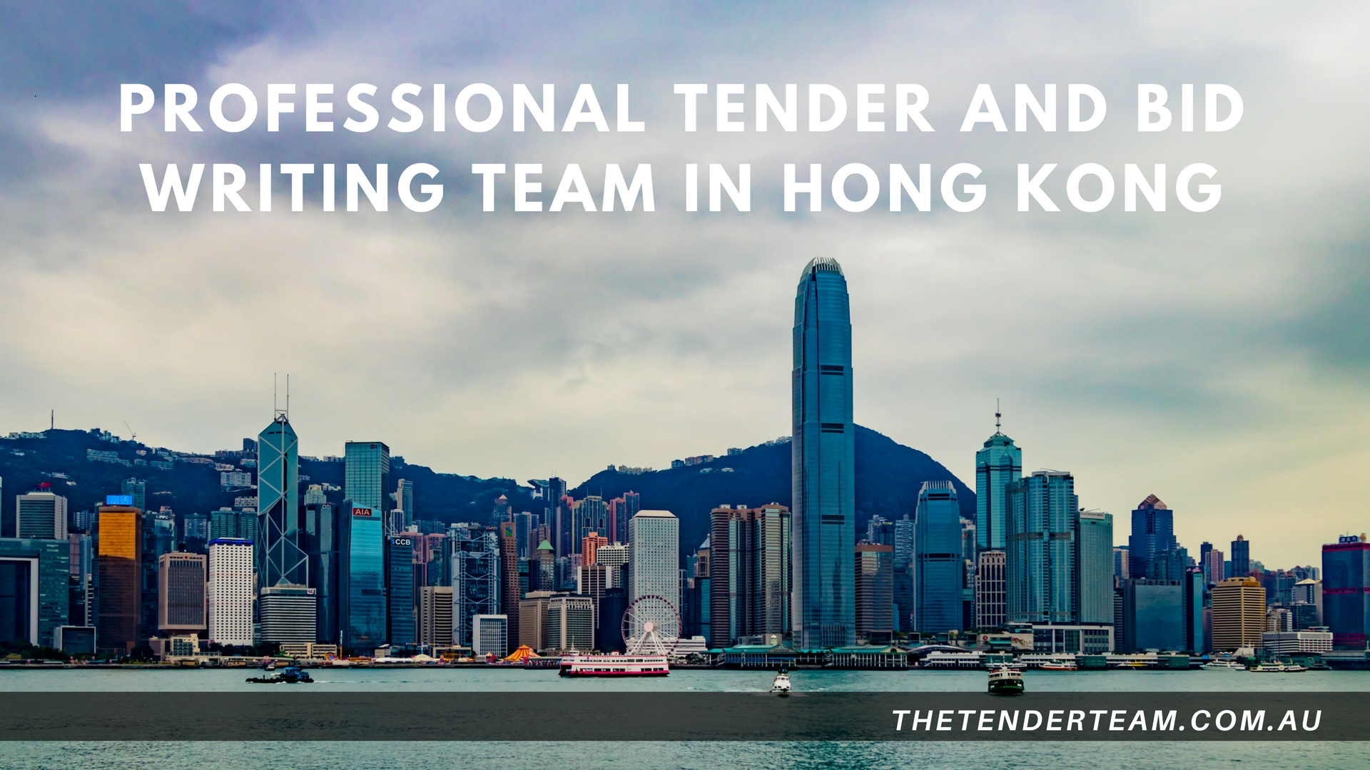 Professional Tender Writers in Singapore