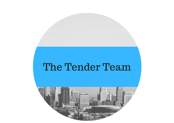 Tender and Bid Writing Team in Hong Kong
