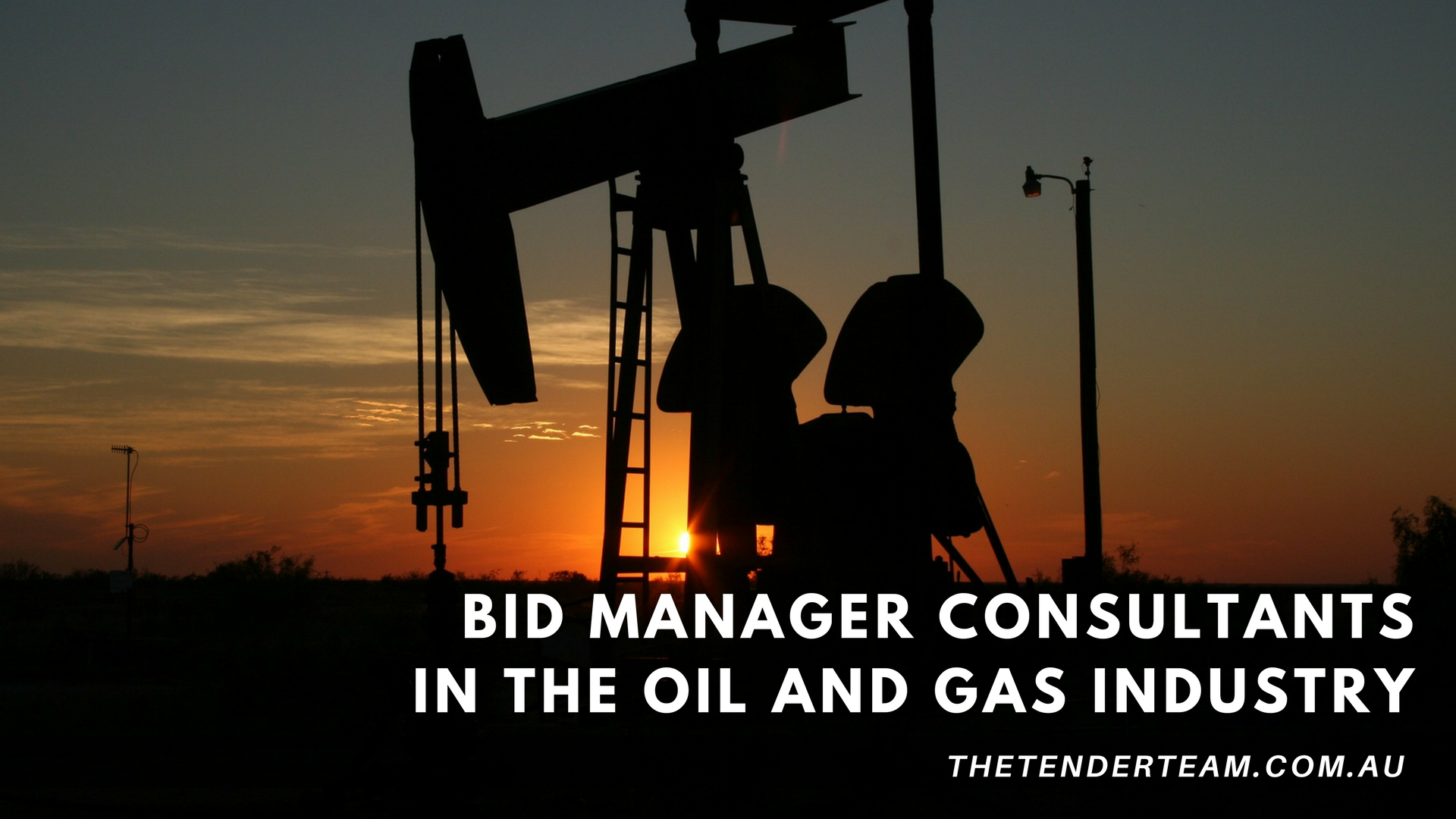 Bid Manager Consultants in the oil and gas industry